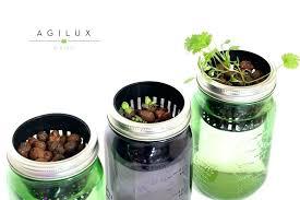 indoor herb garden kits to grow herbs indoors hgtv indoor herb garden walmart hydraz club