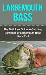 cheap types bass fish find types bass fish deals on line at