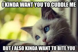 Cuddle Meme - 20 cutest cuddle memes sayingimages com
