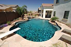 decor small inground pool with palm tree and rocks for outdoor