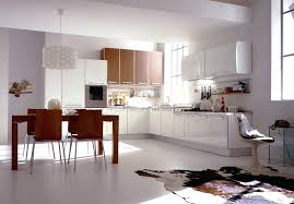 pvc kitchen cabinets pros and cons pvc kitchen cabinets about us pvc kitchen cabinets pros and cons