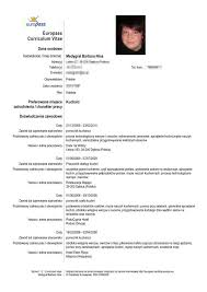 Model Resume Example by Best 25 Europass Cv Ideas On Pinterest Design Cv Creative Cv