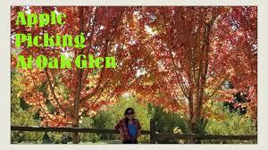 apple picking in oak glen ca chloe irl halloween spooktacular