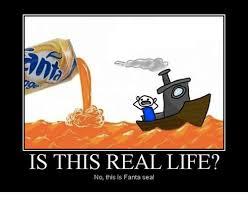 Fanta Sea Meme - is this real life no this is fanta sea fanta meme on sizzle