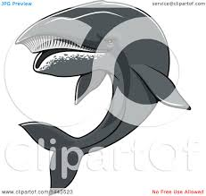 clipart of a tough humpback whale mascot royalty free vector