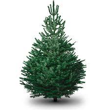 non drop tree trees on salet walmartchristmas