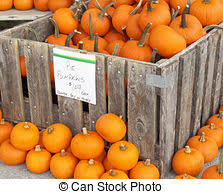 pumpkins for sale various pumpkins for sale at a market different types of stock