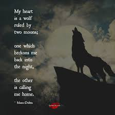 my is a wolf ruled by two moons one which beckons me back