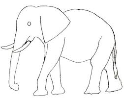 elephant drawing clip art library