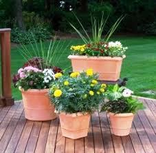 download patio pots ideas solidaria garden