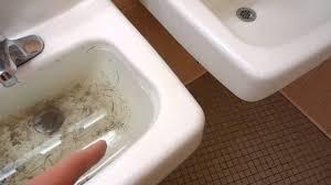 bathroom humor final coed bathroomsdelonhocom