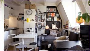 Living Room  Small Space Apartment Ideas One Bedroom Living Room - Efficiency apartment designs