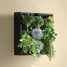 living art green wall tabletop planter green walls living