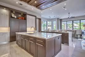 Contemporary Kitchen Ideas Modern Kitchen Cabinets Contemporary Frameless Rta Designer Within