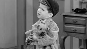 i love lucy season 6 episode 22 january 21 1957