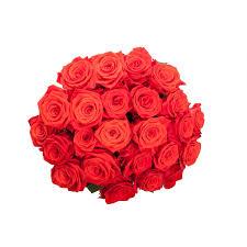 mother u0027s day orange roses mother u0027s day roses mother u0027s day