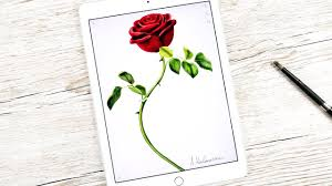 how to draw the rose from beauty and the beast movie 2017 ipad