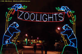 best 25 zoo lights ideas on pinterest christmas at the zoo