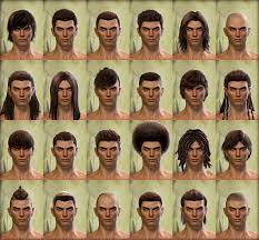 new hairstyles gw2 2015 norn male hairstyles http wiki guildwars2 com images d d5