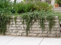 best 25 concrete retaining walls ideas on pinterest retaining