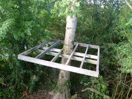 build a treehouse for kids tree house for kids with pipe slide