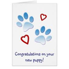 congrats on your new card new puppy cards invitations greeting photo cards zazzle