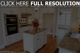 Kitchen Cabinet Painting Cost by Painting Kitchen Cabinets Cost Tehranway Decoration
