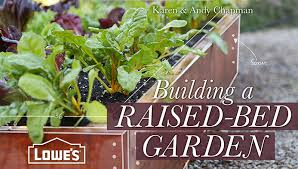 the 5 best vegetables to grow in a raised bed