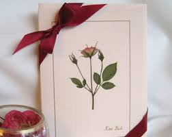 rose card set dried pressed flowers on pink cards romantic