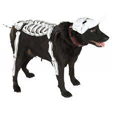 Halloween Dog Costume Costumes Dogs Ebay