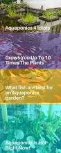 807 best aquaponic systems images on pinterest hydroponic
