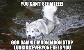 Moon Moon Meme - moon moon lurking imgflip