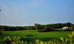 Land For Sale With Barn Virginia Farm For Sale 1 756 Listings Page 1 Of 71 Land And Farm