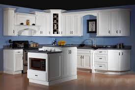 kitchen remodel designer series