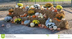 thanksgiving cornucopia decorations stock photo image 46313356