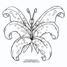 butterfly and flower designs butterfly