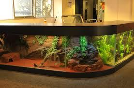 aquarium supplies fish in melbourne australia coburg aquarium