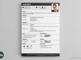 Online Resume Maker For Freshers Excellent Professional Resume Writing Agencies Tags Professional