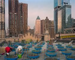 Urban Gardening New York Design Trust And Farming Concrete Release World U0027s First Public