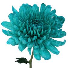 turquoise flowers wedding cremon flower