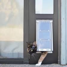 pet door in sliding glass cat doors for sliding glass doors pet doors flaps