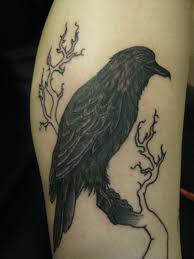 crow on tree branch tattoo photos pictures and sketches