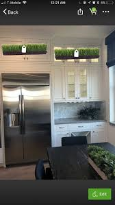 plants for on top of kitchen cabinets suggestions for kitchen cabinets and decor