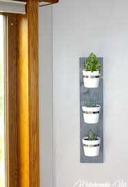 Hanging Succulent Planter by Hanging Succulent Planter Hometalk