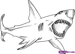 sharks coloring pages shark coloring pages coloring pages kids