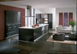 Modern Kitchen Living Kitchen Design by Modern Kitchen Designs Gallery Of Pictures And Ideas
