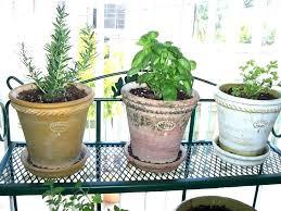 Herb Garden Pot Ideas Indoor Herb Garden Planters Garden Hanging Pots Hanging Planters