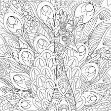 zentangle stylized peacock u2014 stock vector sybirko 102651068