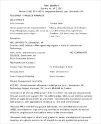 Assistant Project Manager Resume Sample by 29 It Resume Samples Free U0026 Premium Templates