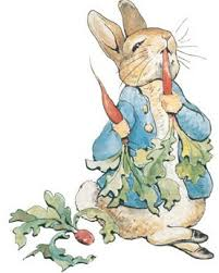 rabbit by beatrix potter rabbit and beatrix potter s secret diary something to
